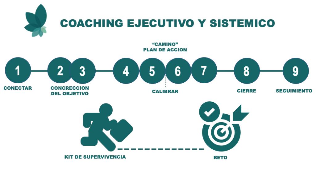 infografia de sesiones de coaching