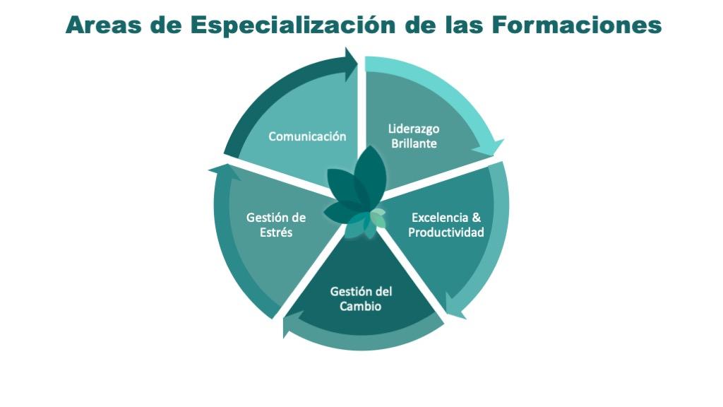 Formaciones para aumentar las capacidades